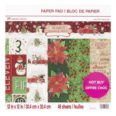 Craft Smith Paper Pad - Say Freeze