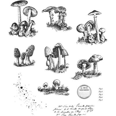 Stampers Anonymous Tim Holtz Cling Stamps - Tiny Toadstools