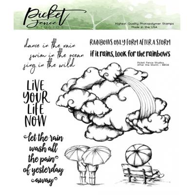 Picket Fence Studios Clear Stamps - After the Storm
