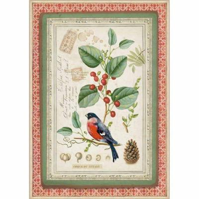 Stamperia Rice Paper A4 - Winter Botanic Little Bird on Holly